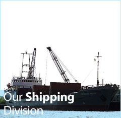 Our Shipping Division
